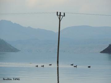 Milli Park Botan Vadisi - Ilısu Barajı / SİİRT