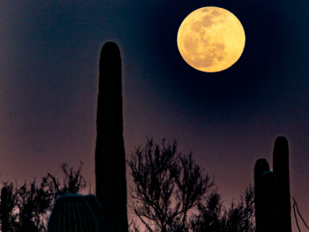 February 2020 Super Snow Moon From Tucson Arizona