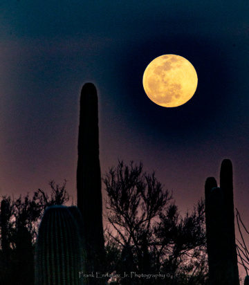 February 2020 Super Snow Moon From Tucson Arizona