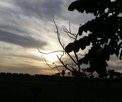 Egypt   - sunset