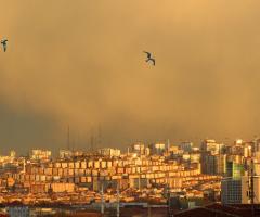 Ankara-