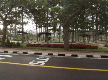 Egypt  - Alexandria - Almontazah Palace Gardens