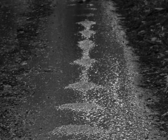 Wetty road