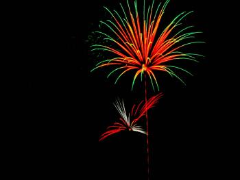 My 'Humming Bird' 4th of July Firework