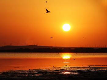 Güne Veda