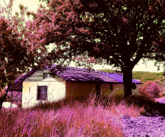 Küçük Ev..