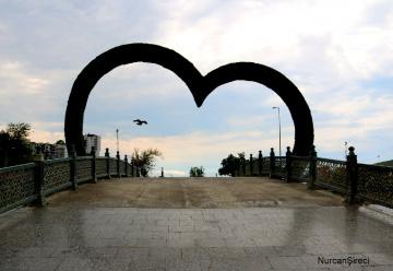 Kalp ve Kuş