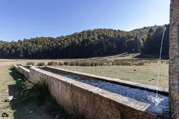 Yaylanın Soğuk Suyu