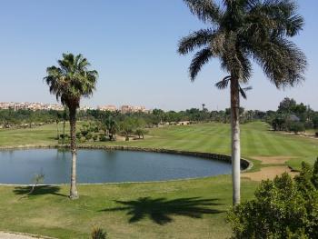 Egypt   - Waterpond
