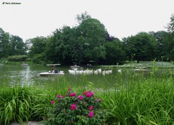 Zoological city garden in Karlsruhe / Germany