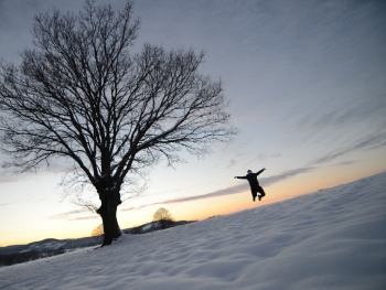 Kış Sevinci