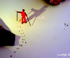 Miniciks Hayatlar  İzler &Gölgeler
