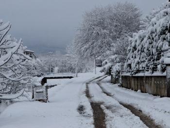 Sokağımda Kar Var