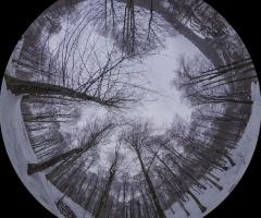 Suuçtuda Kar - Kış