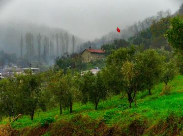 Akçapınar Köyü - MKPaşa
