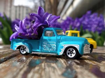 Miniiciks Hayatlar  1953 Chevy Truck