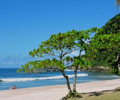 Juréia beach
