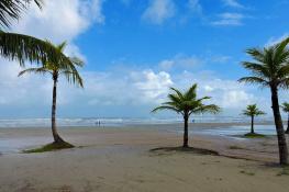 Boracéia beach