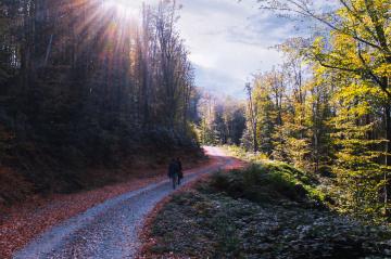 Doğa Yürüyüşü