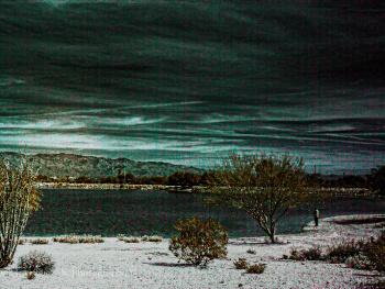 Infrared Desert Oasis