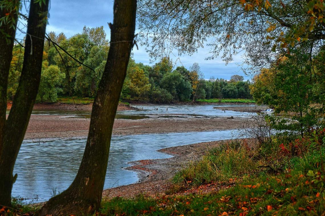 ... autumn Neise river, Polonya