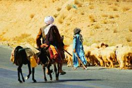 Baloch Shepherd..