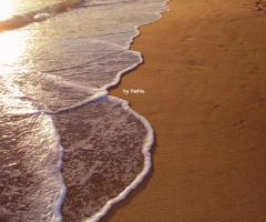 Wave...